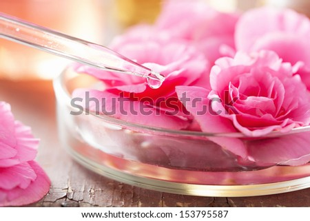 begonia flowers and pipette. aromatherapy and spa - stock photo