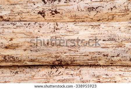 Beige brown texture of three lie on top of each other, peeled, horizontal tree trunks  - stock photo