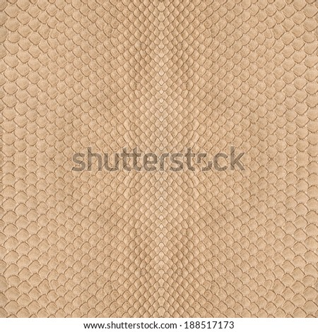 beige snake skin texture - stock photo