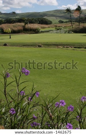 Bel Ombre Golf Course (portrait) - stock photo
