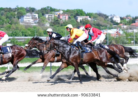 "BELGRADE,SERBIA-SEPTEMBER 2:Unidentified horses and jockeys in gallop in race ""Wretham House"" on September 2, 2011 in Belgrade, Serbia - stock photo"