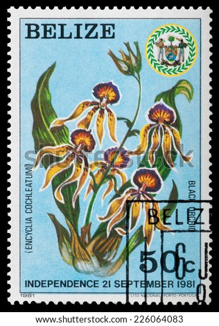 BELIZE - CIRCA 1981: A stamp printed in Belize shows flower Black Orchid, circa 1981 - stock photo
