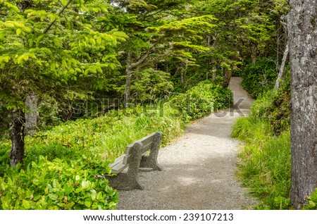 Bench along a Nature Trail - stock photo