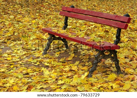 bench among the fallen leaves, autumn season, October - stock photo