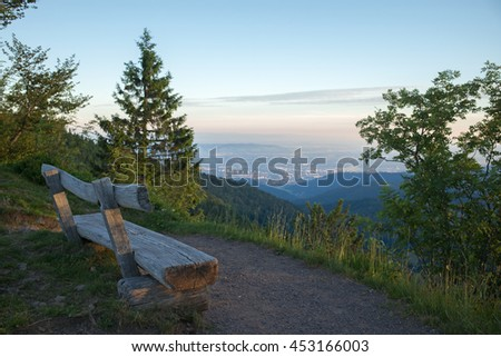 bench at Black Forest, Germany - stock photo