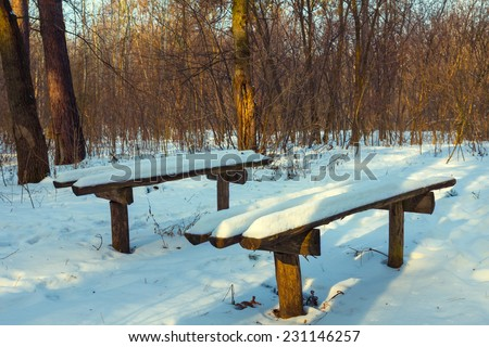 bench in a winter forest - stock photo
