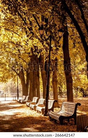 Bench in autumn park. Autumn landscape - stock photo