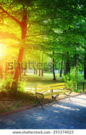 bench in city park at sunset time, sunlight behind the green tree with shadows on walkway - stock photo