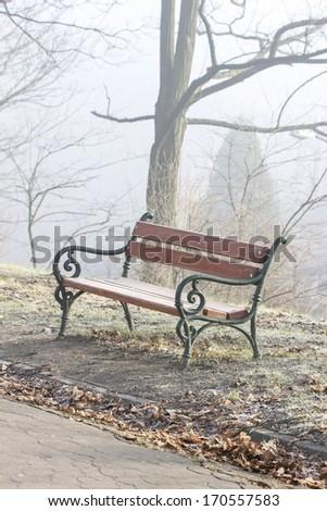 Bench in city park in morning mist - stock photo
