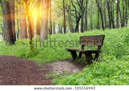 Bench in the park with sunshine - stock photo