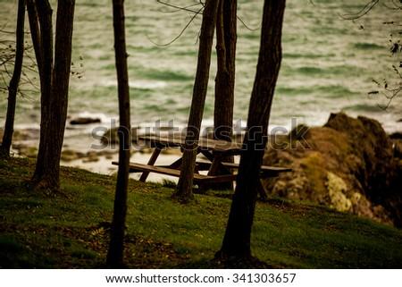 bench, solitude - stock photo