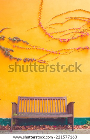 Bench standing in Front of a Yellow Painted Wall with Climbing Plants - stock photo