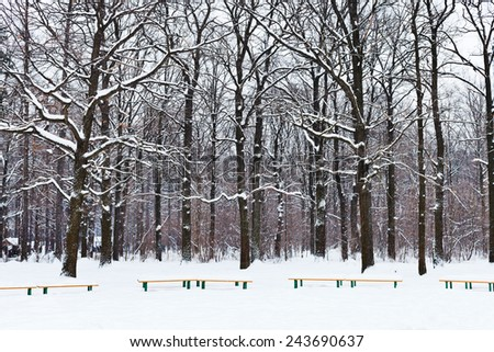 benches and trees under snow in city park in winter - stock photo