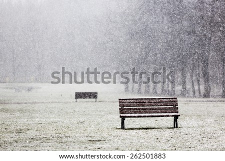 Benches durng a heavy snowing in the park in Sofia, Bulgaria. - stock photo