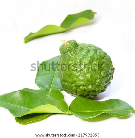 Bergamot is Condiment Thailand and Herbal Medicine - stock photo