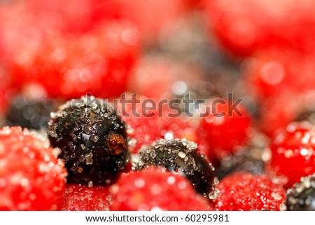Berries and sugar. - stock photo