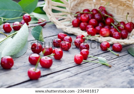 berries in a wicker basket - stock photo