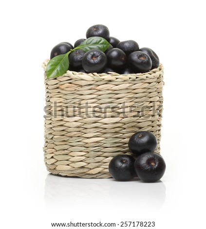 Berries in bowl isolated on white background. - stock photo