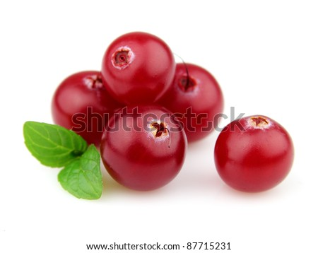 Berry of cranberry with mint - stock photo