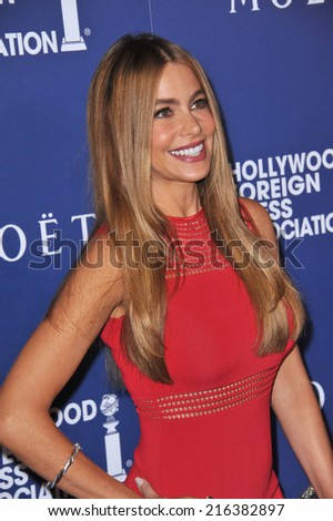 BEVERLY HILLS, CA - AUGUST 14, 2014: Actress Sofia Vergara at the Hollywood Foreign Press Association's annual Grants Banquet at the Beverly Hilton Hotel.  - stock photo