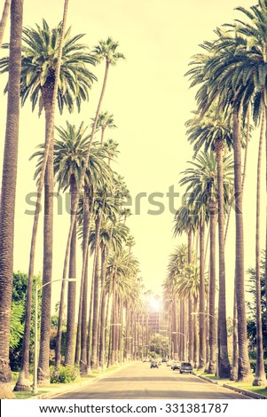 Beverly Hills street with palm trees at sunset, Los Angeles - stock photo