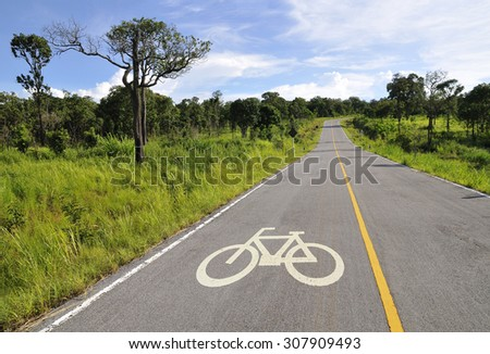 Bicycle lane in forest under beautiful sky - stock photo