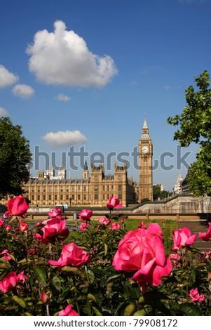Big Ben with roses, London, UK - stock photo