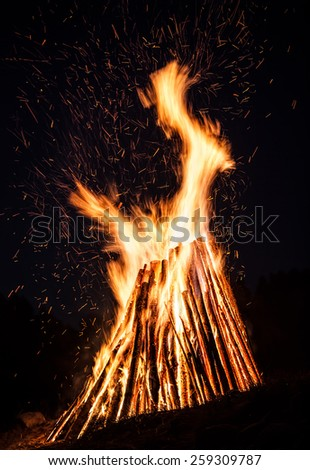 Big bonfire at night. Fire flames on nature background - stock photo