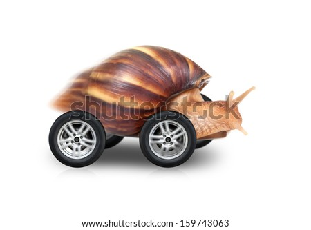 Big brown snail is fast driving on wheels isolated on white background - stock photo