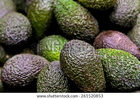 Big bunch of avocados at farmer market