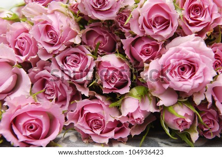 big bunch of multiple pink roses and Silk - stock photo
