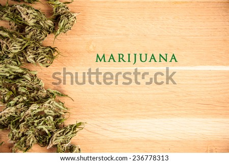 big canabis marijuana plant detail on wood table - stock photo