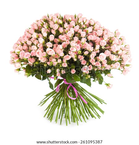 Big flower bouquet from bright pink roses isolated on white background. Closeup. - stock photo