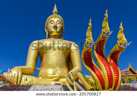 big golden buddha statue and serpent king statue on the stairs in buddhist temple - stock photo