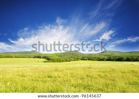 Big green mountain meadow. Nature composition. - stock photo