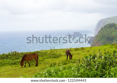Big Island Hawaii landscape with ocean mist, cost line  and horses - stock photo