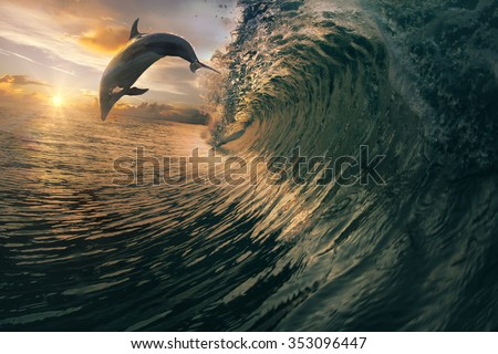 Big ocean breaking wave and sunset dolphin leaping. - stock photo