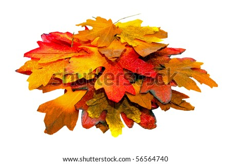 Big pile of autumn leaves with clipping path - stock photo