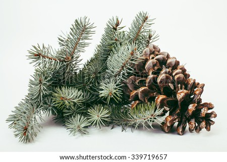 big pine tree cone like decoration to holiday card for Christmas with copyspace macro - stock photo
