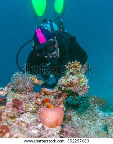 Big Purple Anemone with Clown Fish and Asian Man - Scuba Diver, Maldives - stock photo