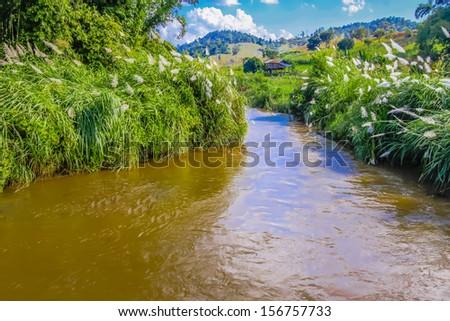Big river and hut - stock photo