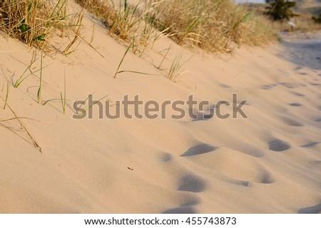Big Sable Point Dunes, Michigan, USA - stock photo