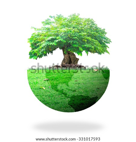 Big tree earth globe of grass. Ecology City Arbor Wood Trust CSR Campaign Soil Sole Rural Park Lawn Idea Map Save Food Plant Business Life style Charity Energy Design Planet Plant concept. - stock photo