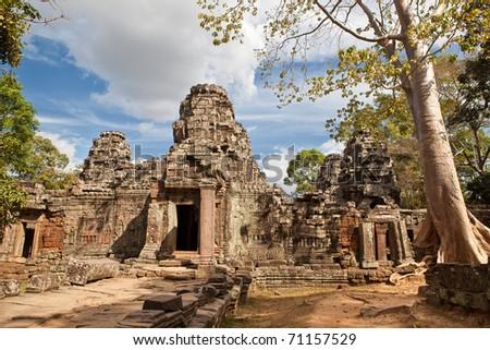 big tree on the ancient temple Ta Phrom Aspara, Angkor Wat, Cambodia - stock photo