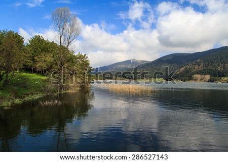 Big trees in meadow by the coastline of a lake or river, under cloudy sky with its reflection on water. - stock photo