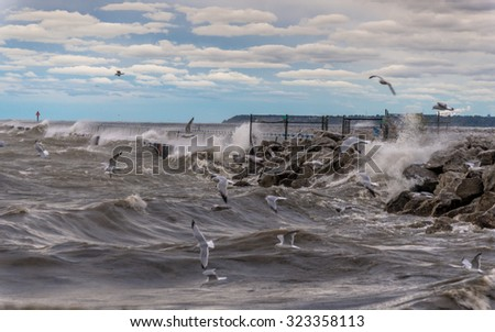 Big waves and seagulls flying on Lake Michigan in Milwaukee, Wisconsin during windy morning - stock photo
