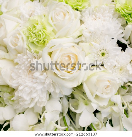 big white roses and white flowers background texture. - stock photo