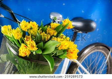 Bike with flowers - stock photo
