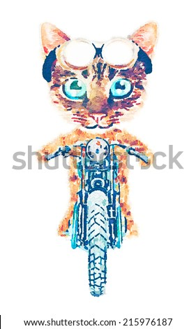 biker cat print watercolor illustration - stock photo