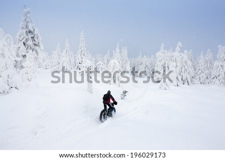 biker in winter, Orlicke Mountains, Czech Republic - stock photo